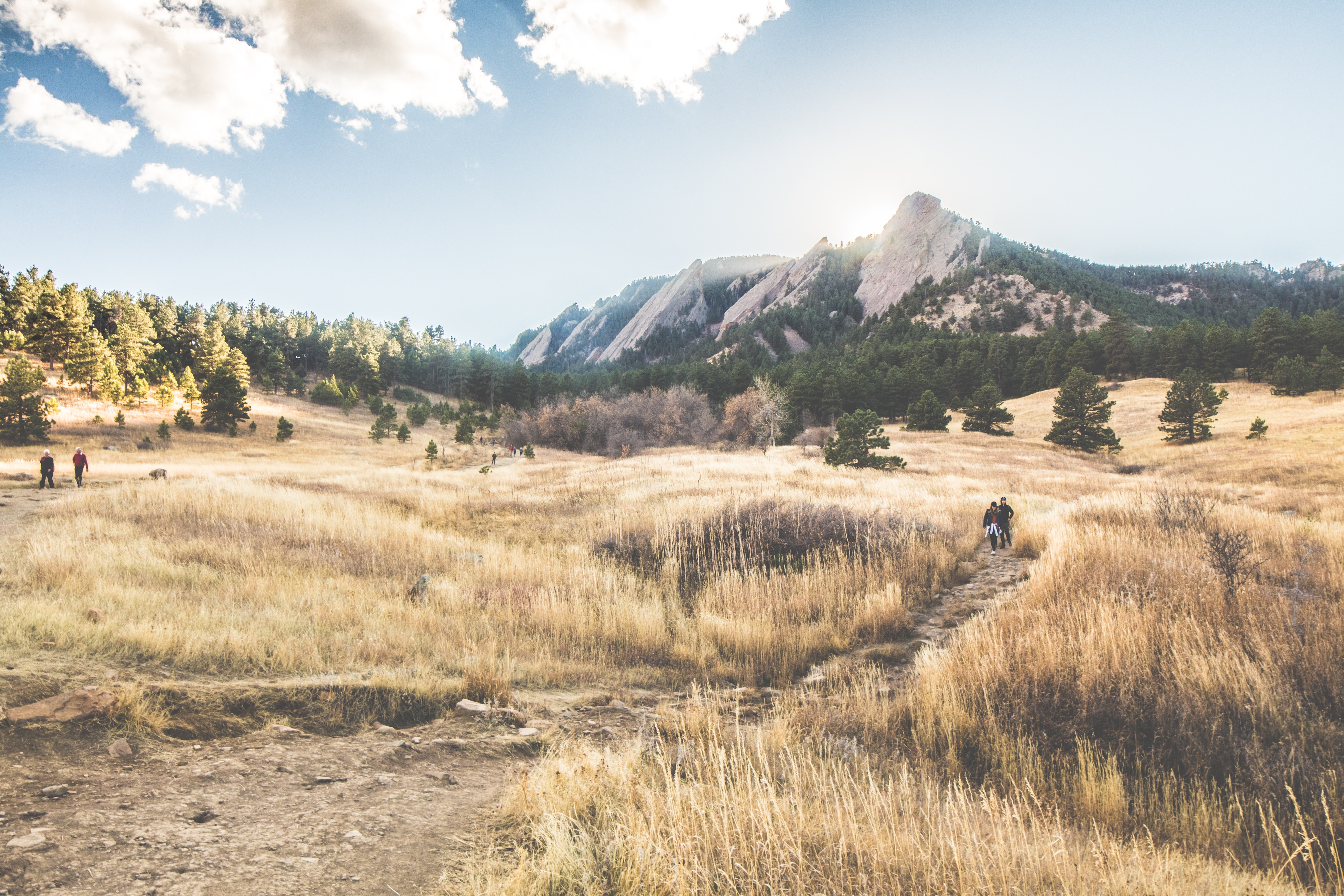 Golden fields surround a hiking path before the Flat Irons in Boulder, Colorado.