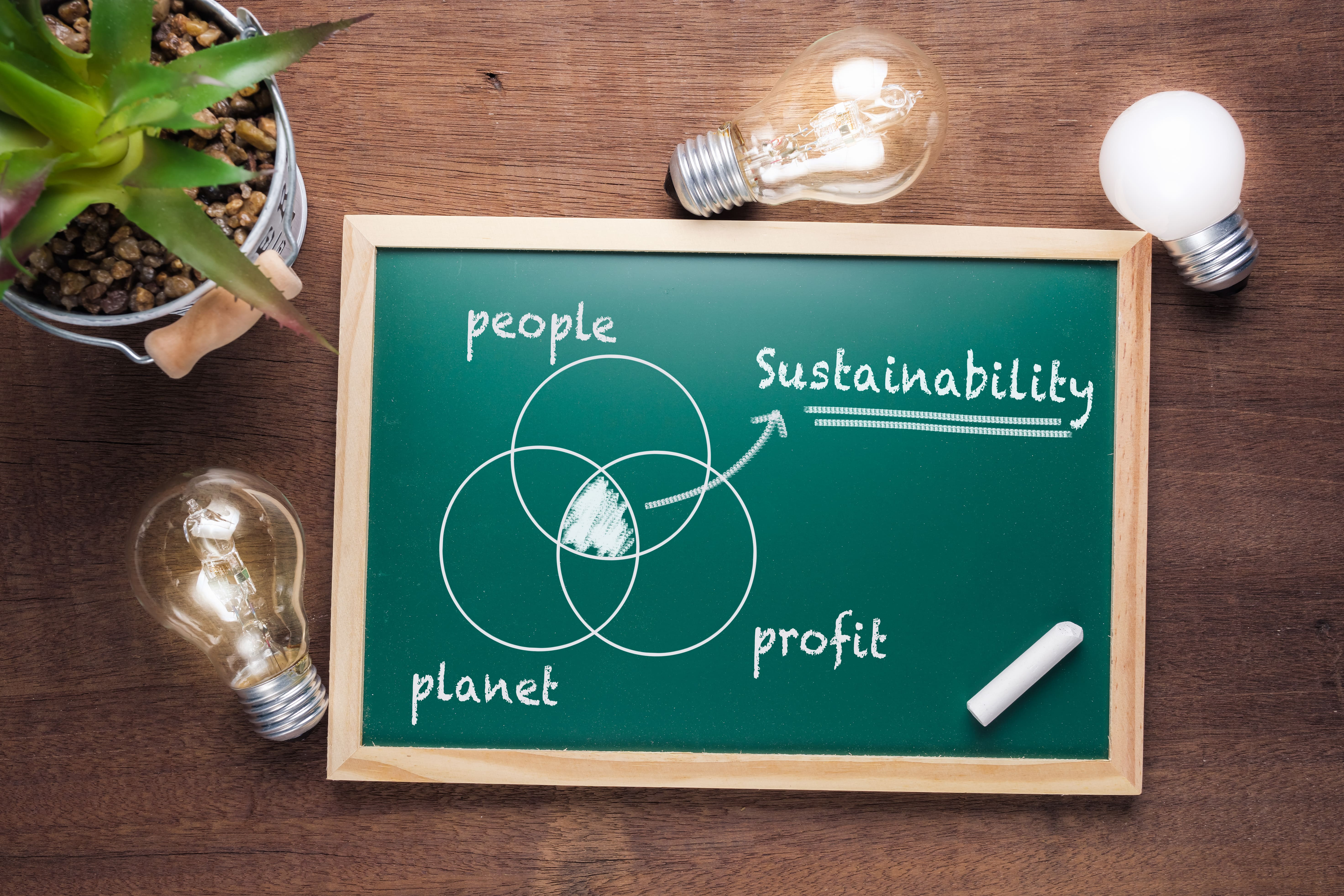 A green chalkboard with a venn diagram on it shows that sustainability is at the intersection of people, planet, and profits - the triple bottom line - the chalkboard is on a wooden desk with three lit lightbulbs and a succulent plant around it.