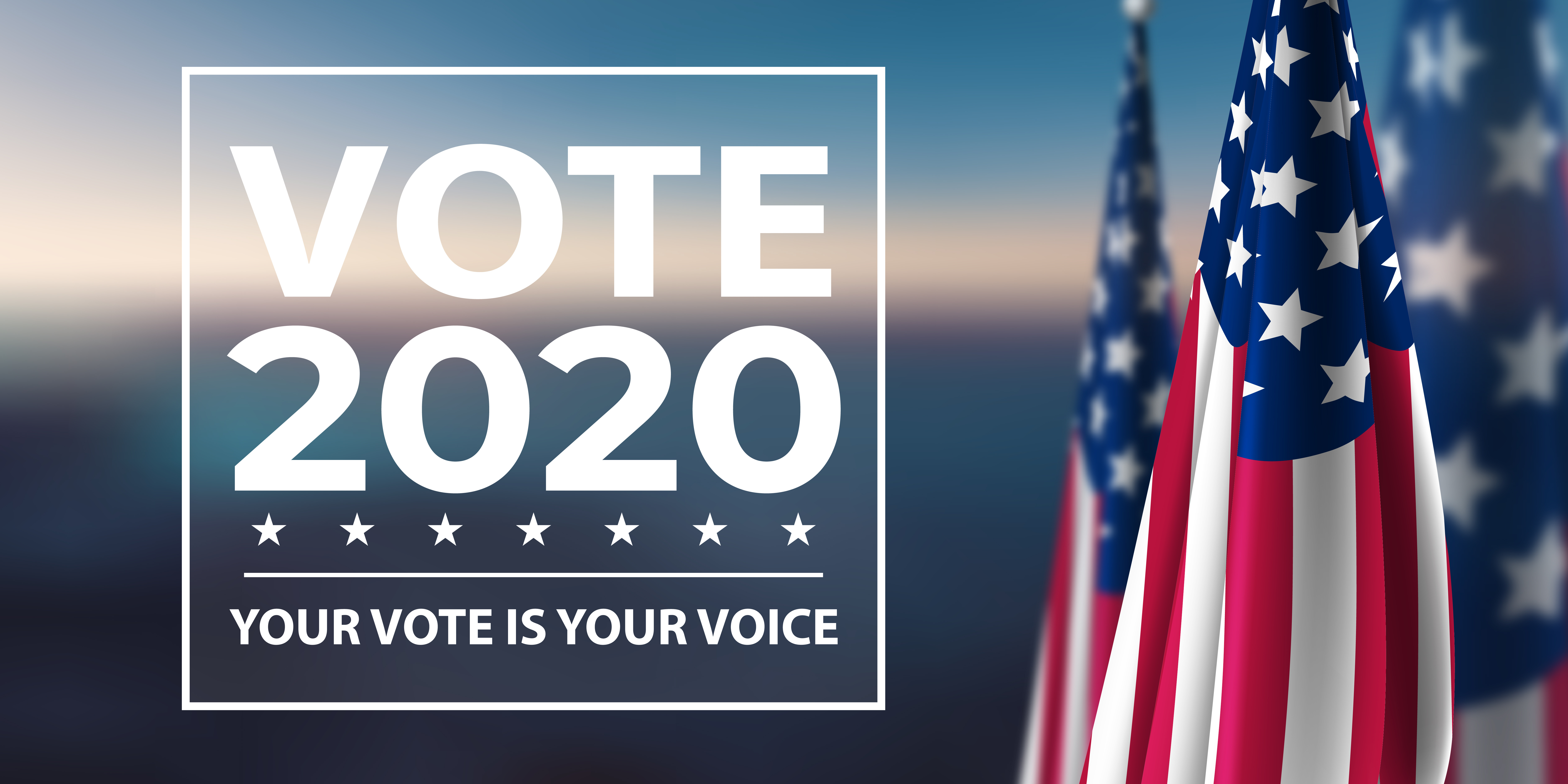 The words 'Vote 2020 - Your Vote is Your Voice' appear in white next to the American flag